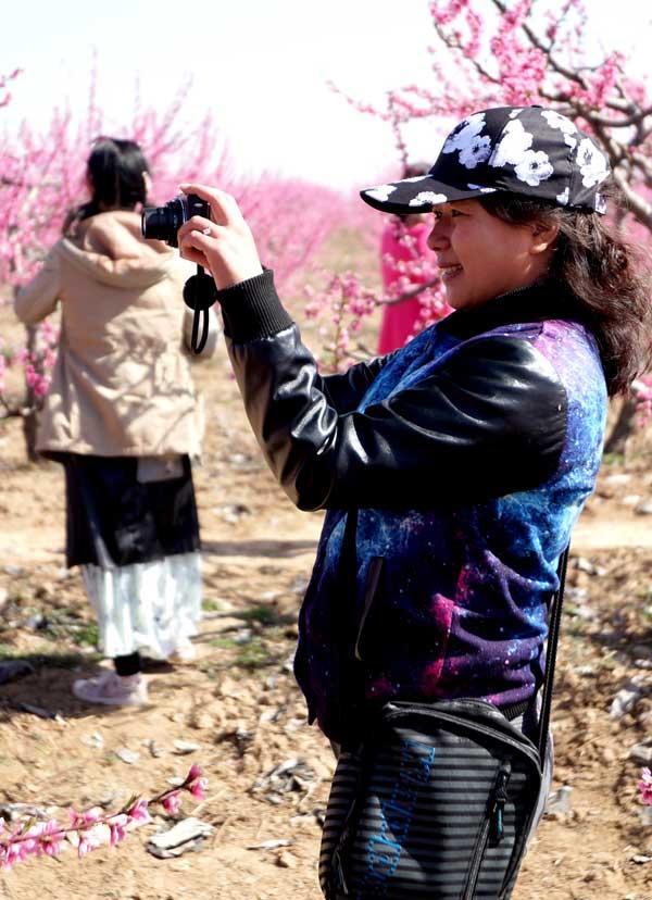 桃花节 纪实 猎奇摄影作品展